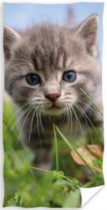 Osuška Koťátko Tygřík , Rozměr textilu - 70x140