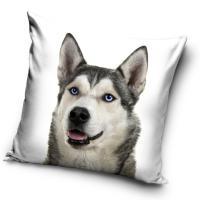 Povlak na vankúšik Sibírsky Husky Selfie , Barva - Biela , Rozměr textilu - 40x40