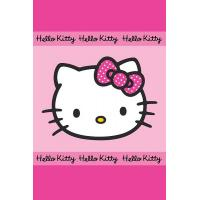 Uterák Hello Kitty , Barva - Ružová , Rozměr textilu - 40x60