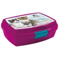 Desiatový BOX Mačky , Barva - Malinová